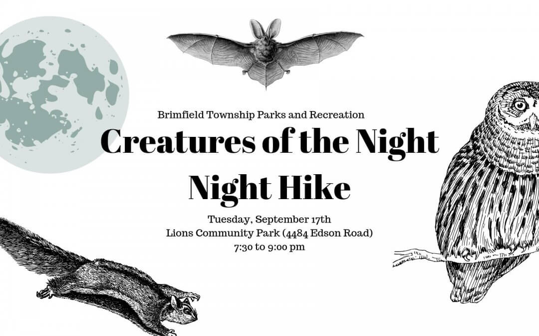 Creatures of the Night- Night Hike